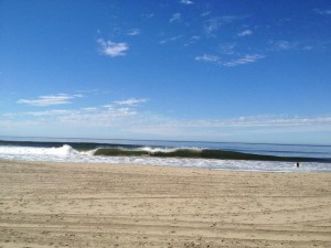 A pristine beach, great waves and clean water are the environment Surfrider is working to maintain.